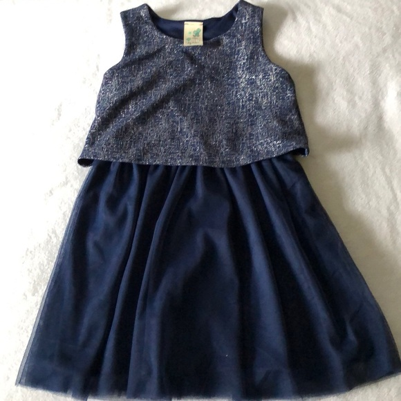 Other - Lilly Bleu Girls tutu dress